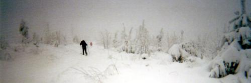 Winter auf der Lettstädter Höhe