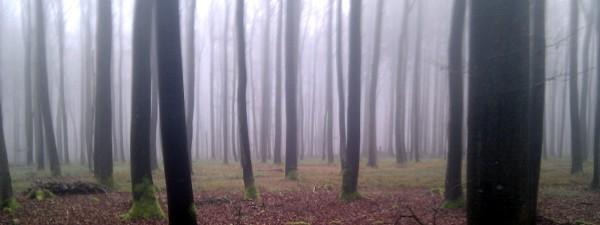 Schwäbische Alb im Nebel