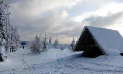 Im Winter. Im Schwarzwald.